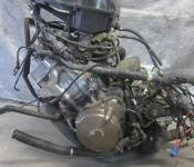 01-06 Honda CBR F4i  Engine